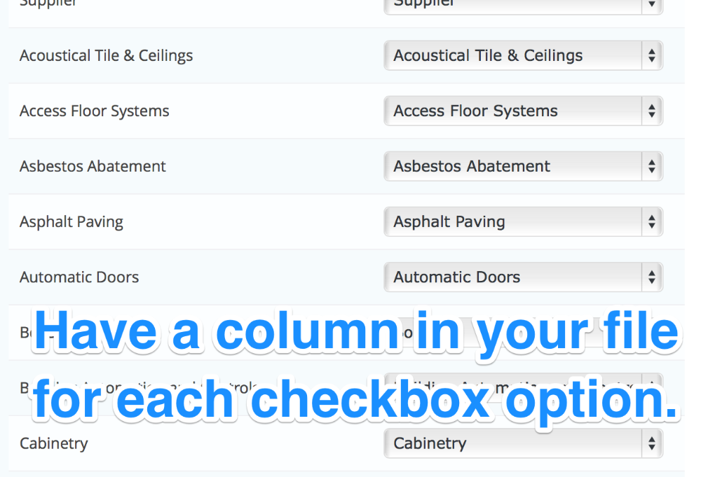 Have a column in your file for each checkbox option.