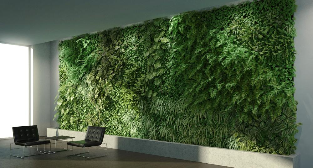 Creating A Green Wall