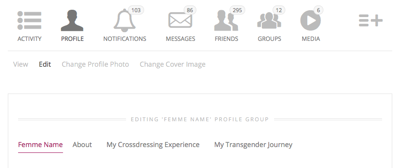 Editing Your Crossdresser Heaven Profile