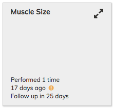 Muscle Size Assessment