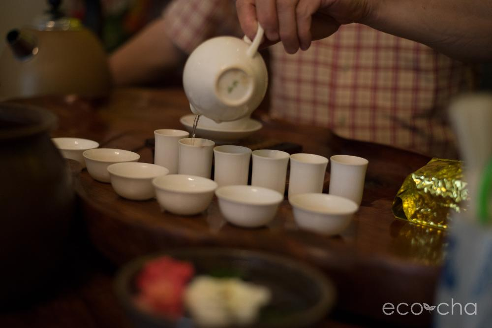 Eco-Cha brewing tea