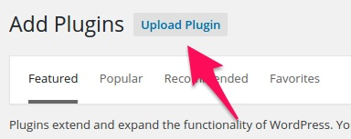 Install the plugin through upload