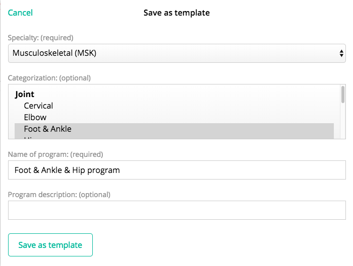 this allows you to name the template and select the search filters your program will be saved under