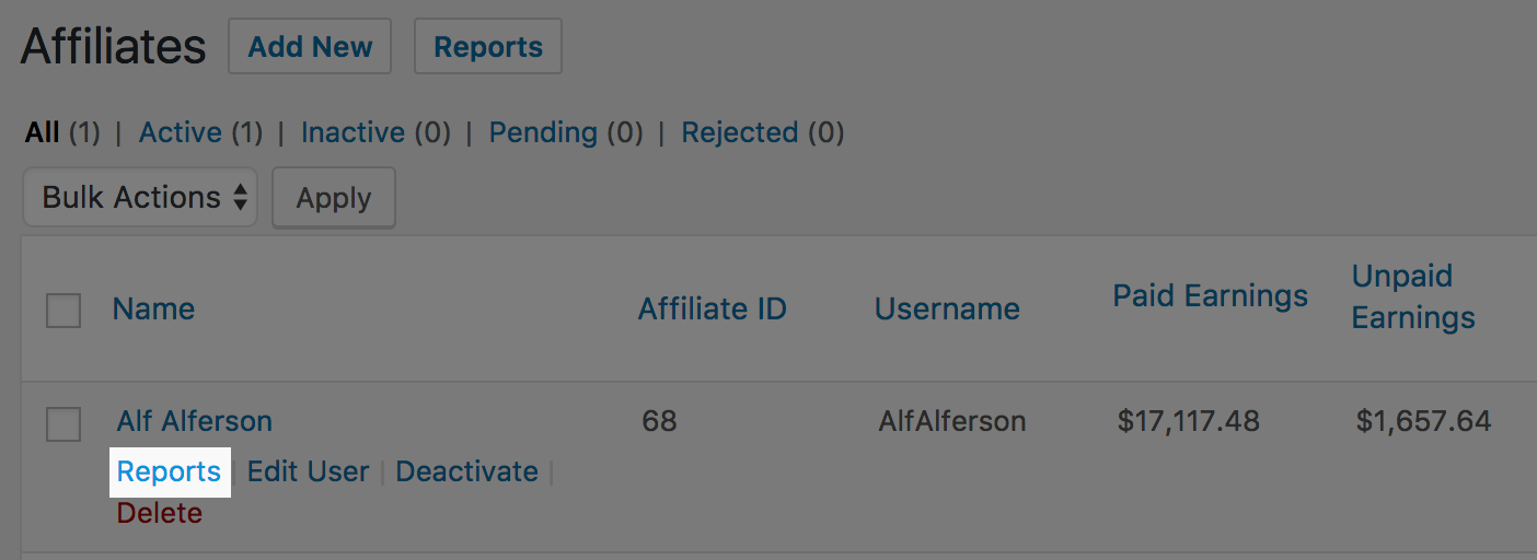 A link to view an individual affiliate report in AffiliateWP.