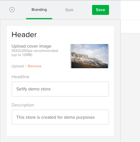 How to customize my store? - Sellfy documentation