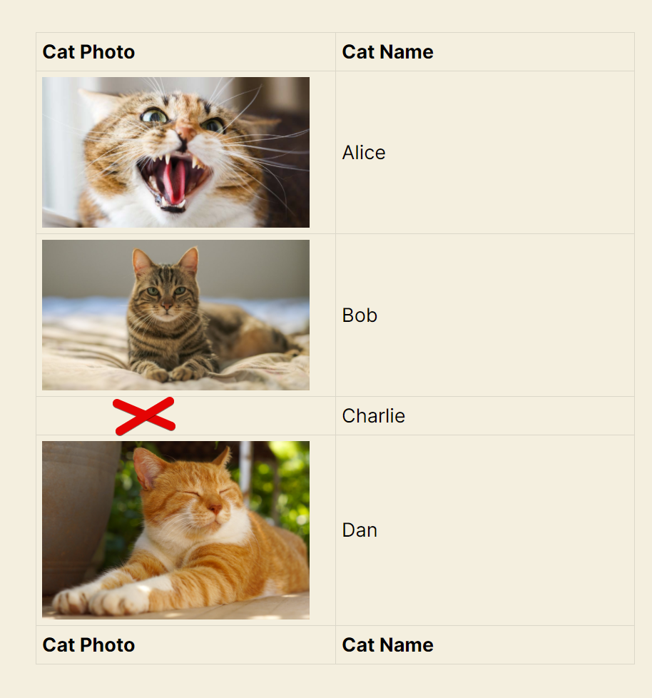 Screenshot of a View showing 4 entries, 3 of them have photos of cats except one