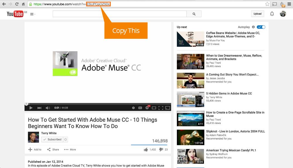 How to Set up the Carousel Video Gallery Widget (YouTube
