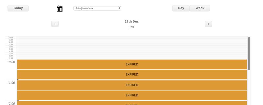 Appointments Booking - Calendars - Calendar Views - CreativeMinds