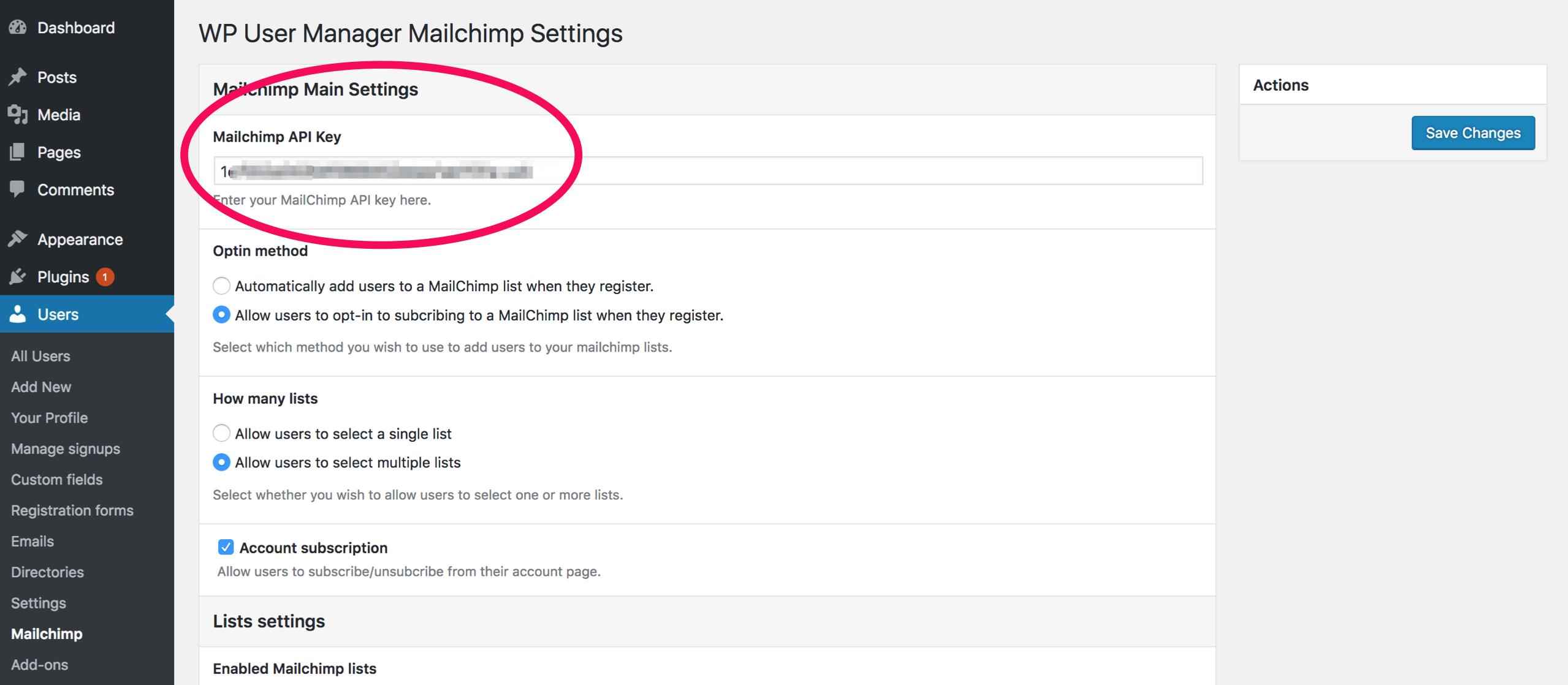 MailChimp API Key - WP User Manager