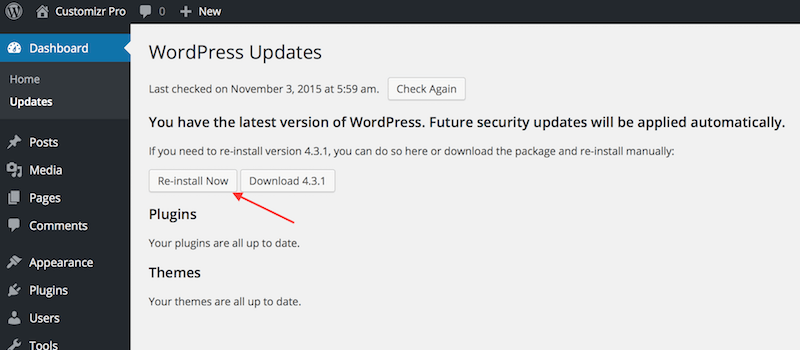 How to fix a 500 Internal Server Error in WordPress - Press