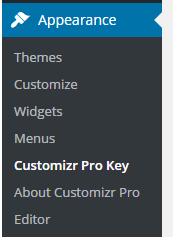 How to activate your product key ? - Press Customizr