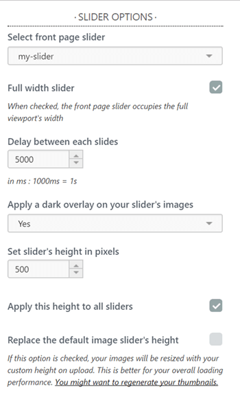 Slider options customizer