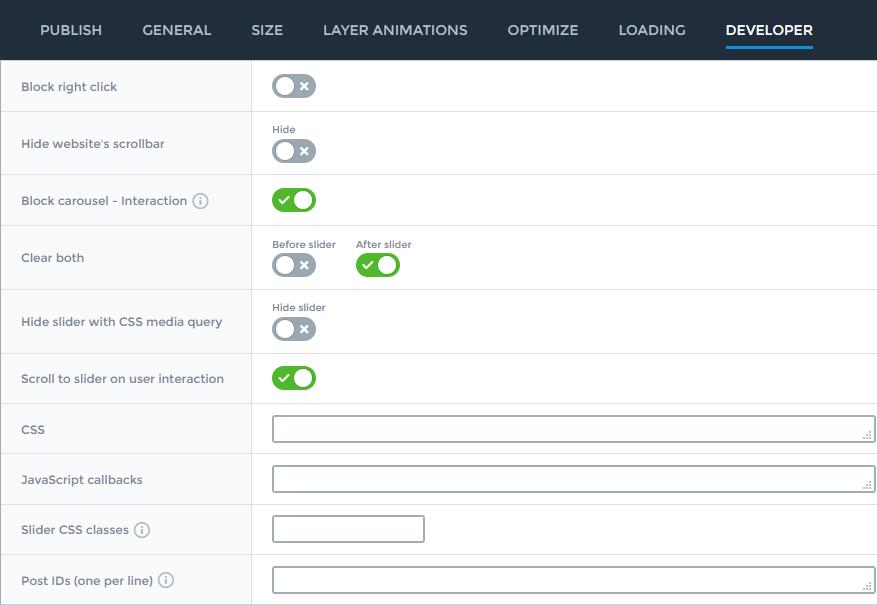 Slider settings - Developer - Smart Slider 3