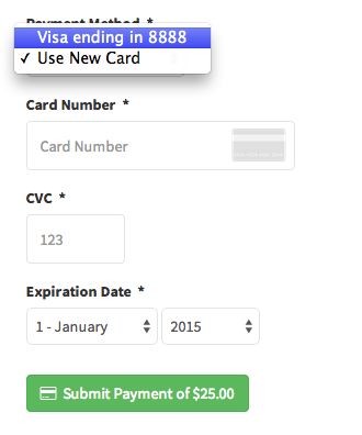 Clients Submit Payment from Portal - Select Payment Method
