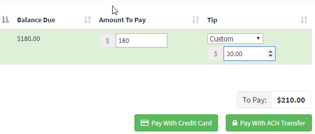 Tipping in Time To Pet - using a custom tip amount