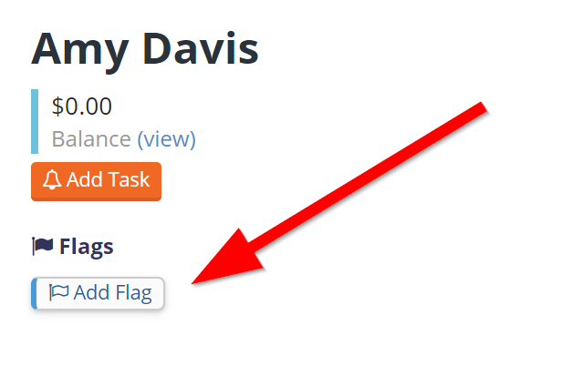 Create a staff flag by selecting Add Flag on staff member's profile