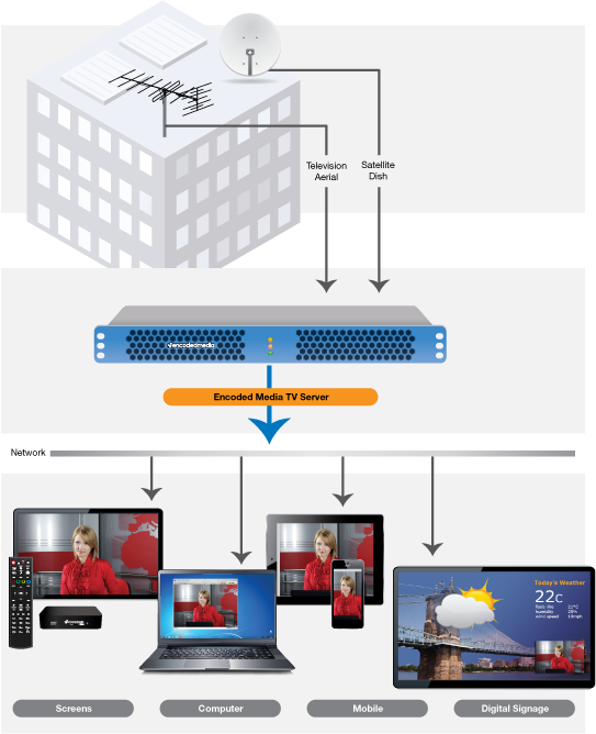 IPTV Network Requirements and Considerations - Encoded Media