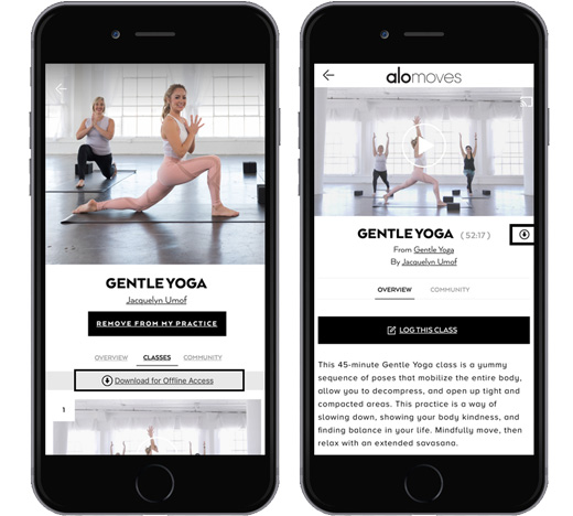 How do I download my workouts to my iOS or Android device? - Alo