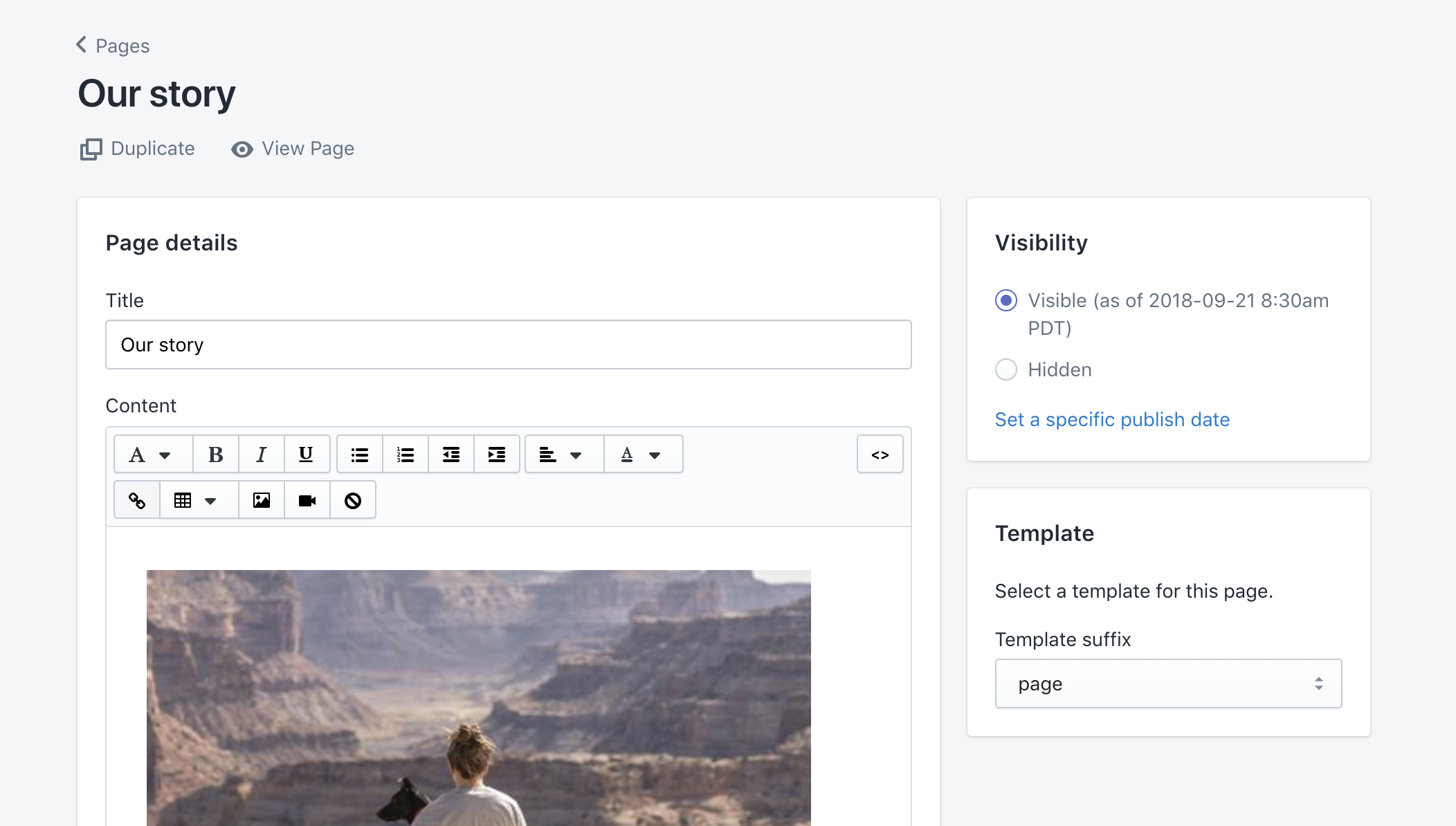"Example ""Our story"" page in static page editor"