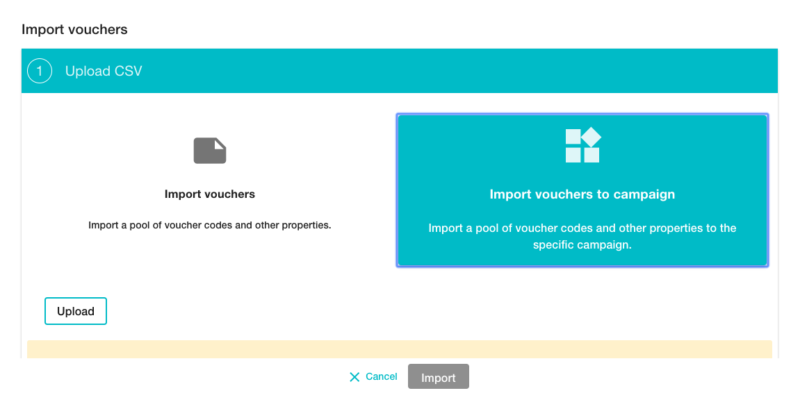Importing vouchers to campaign