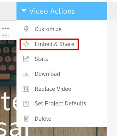 Adding Videos - Qwilr Help Center