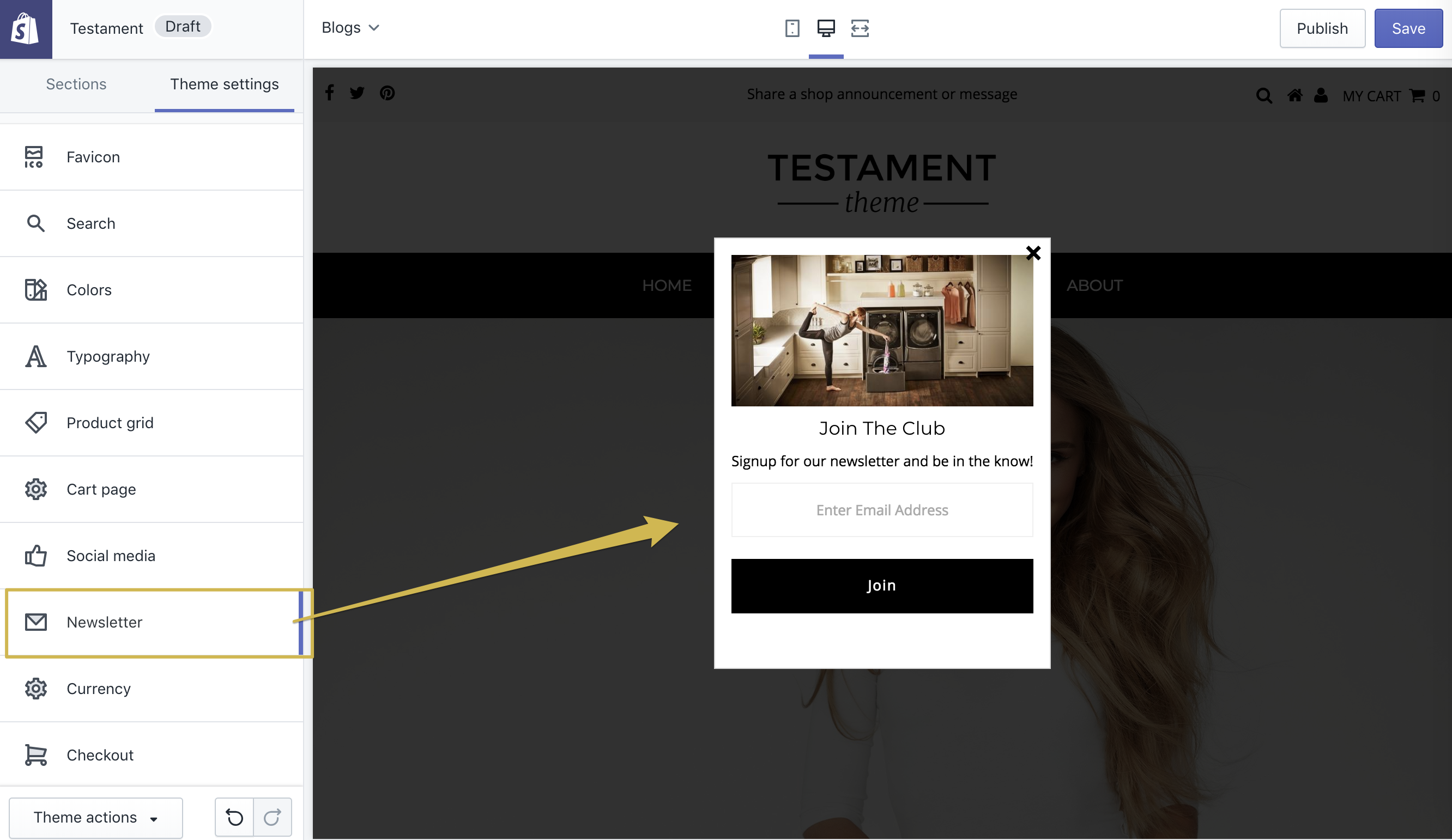 15  Testament Theme: Setting up the Newsletter Subscription