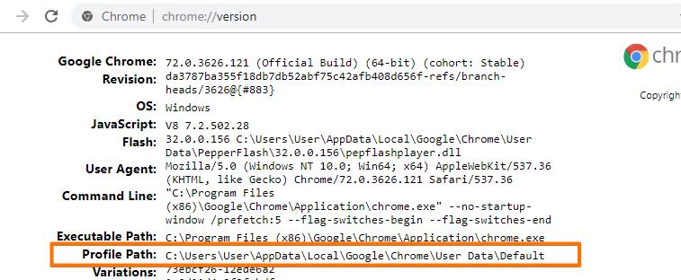 google chrome corrupted file