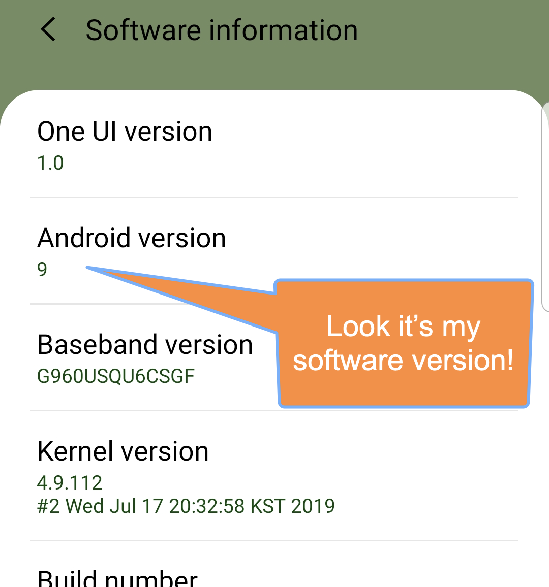 Android version as shown in settings