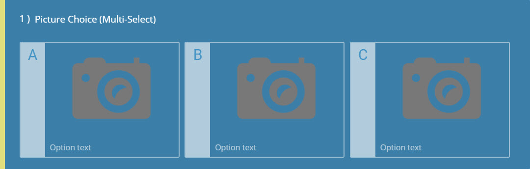 Picture Choice (Multiple Select) Question