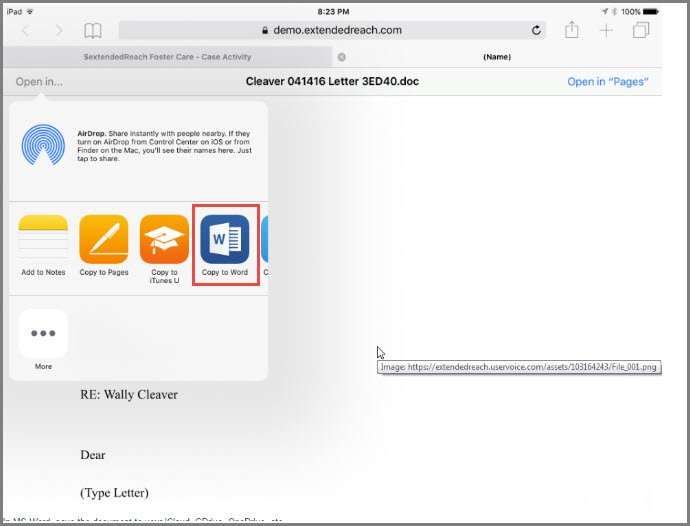 Editing Word Documents on iPad - extendedReach General Case