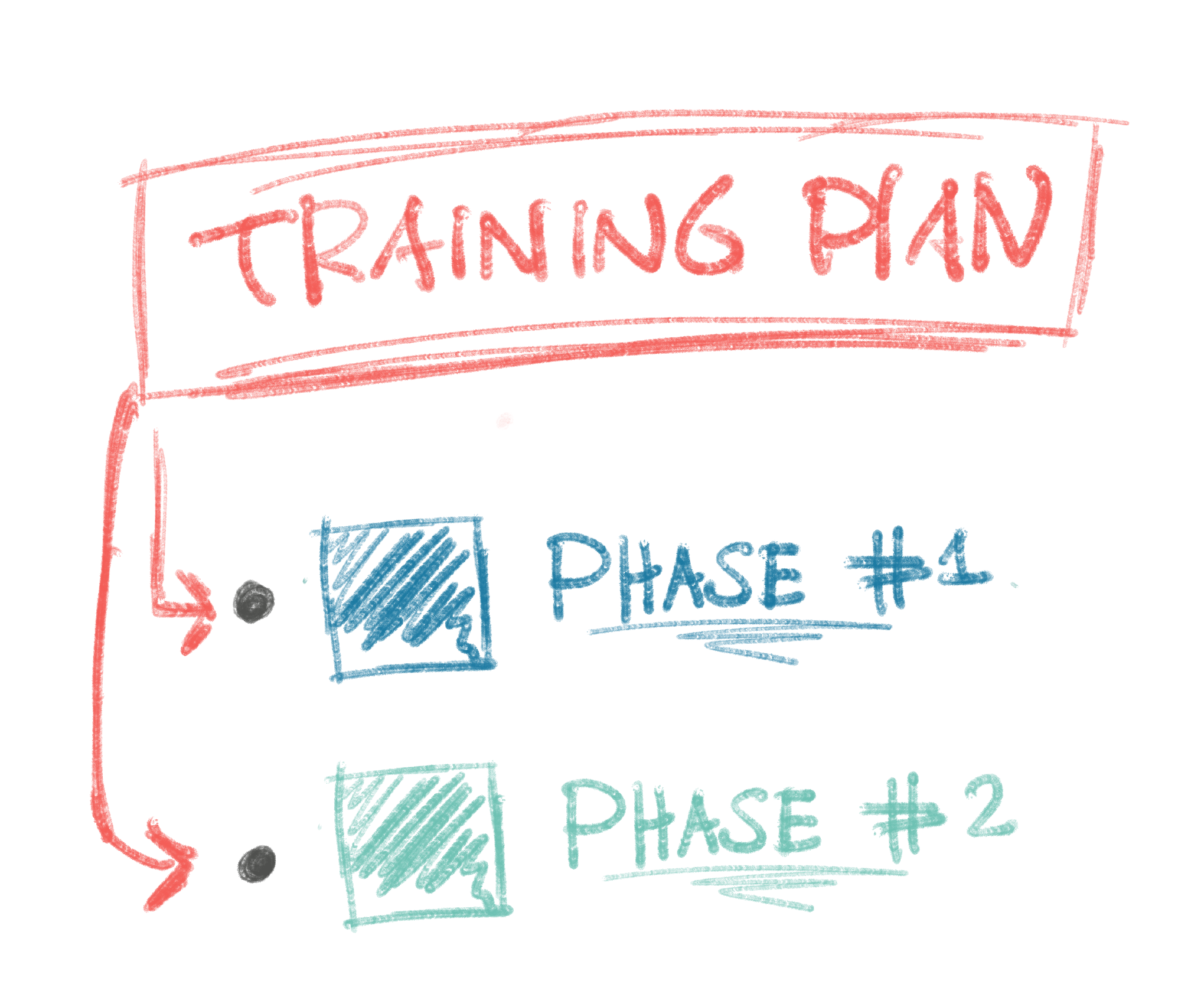 A Training Plan has many 'Phases'.