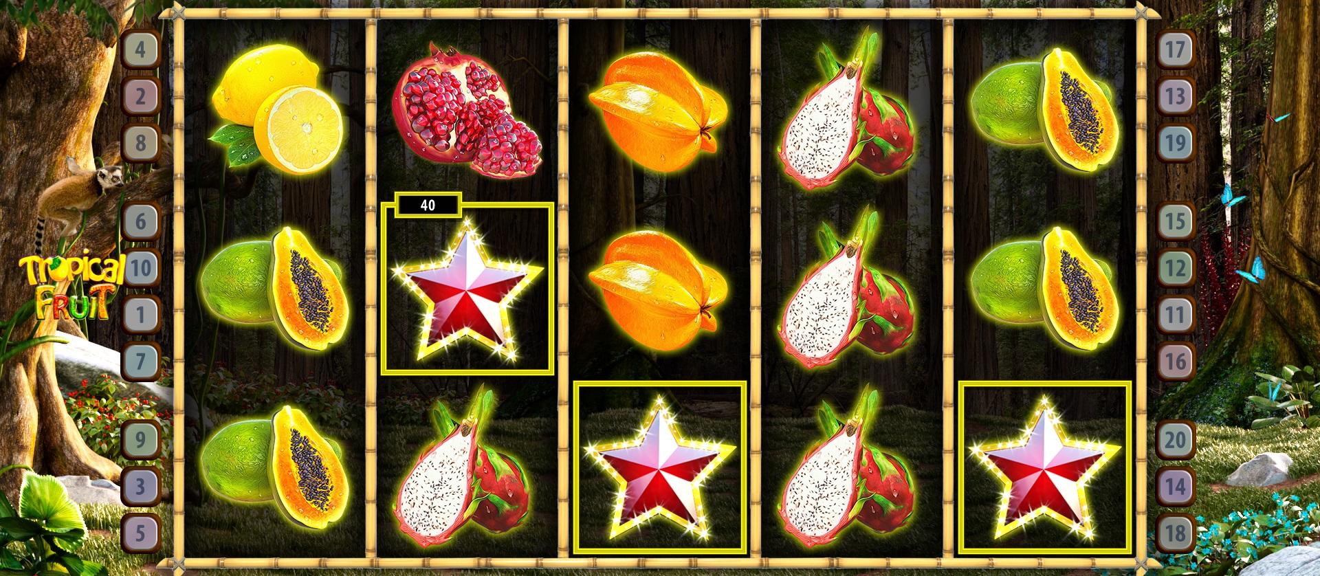 Игровые автоматы tropical чат рулетка 18 онлайн бесплатно